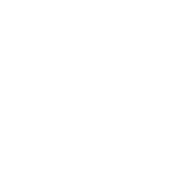 Dragonfly Flightsuit Icon